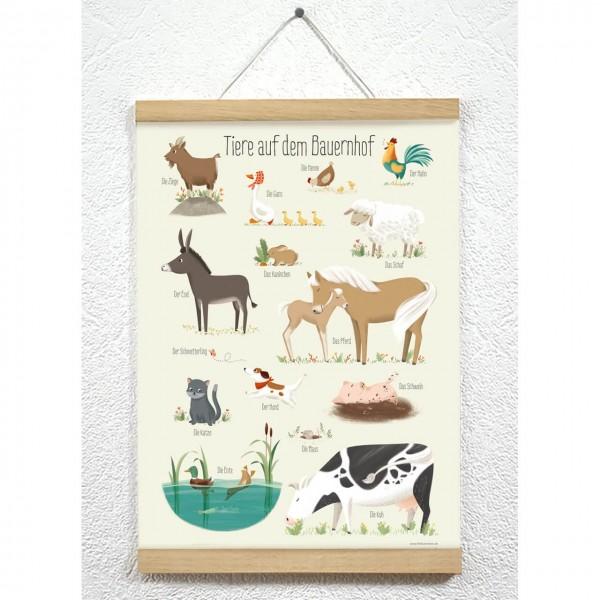Posterleiste 50cm Farbe Eiche
